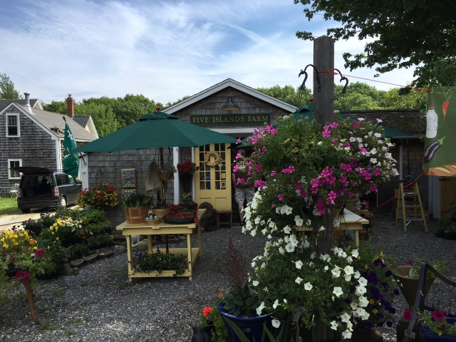 Five Islands Farm