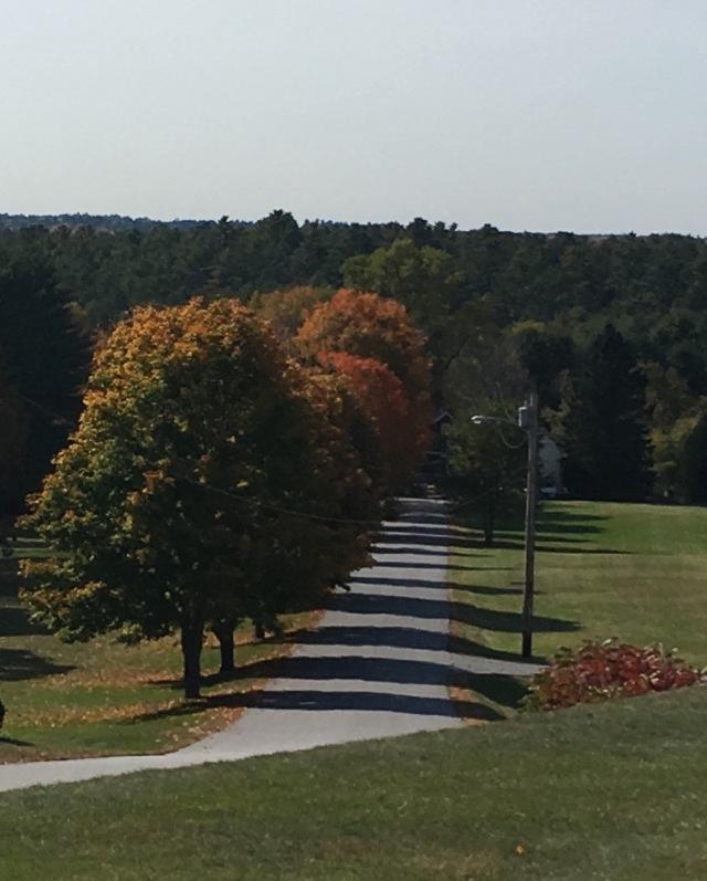 autumn-alle